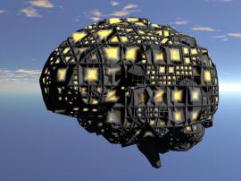 brainsky