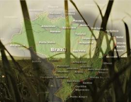 brazil-ethanol